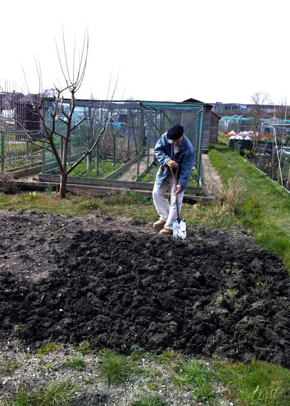 allotment april 2013
